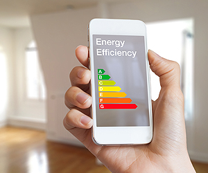 Are Apartments in India more Energy Efficient than Houses?